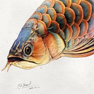 Ý nghĩa hình xăm cá rồng là gì?