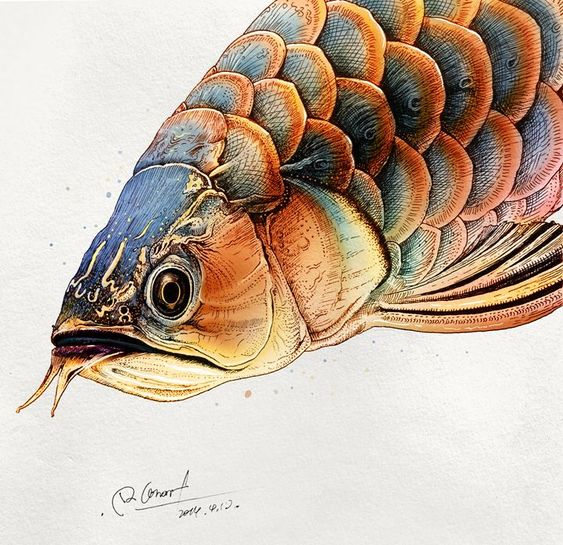Hình xăm cá rồng mang ý nghĩa tài lộc