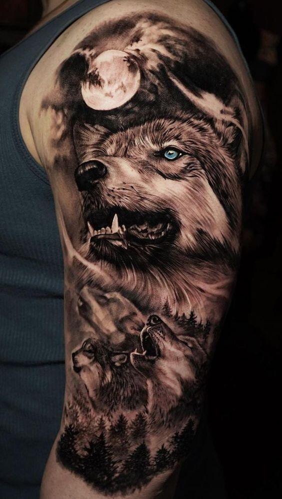 Chó sói xám có ý nghĩa sâu sắc về tinh thần đồng đội
