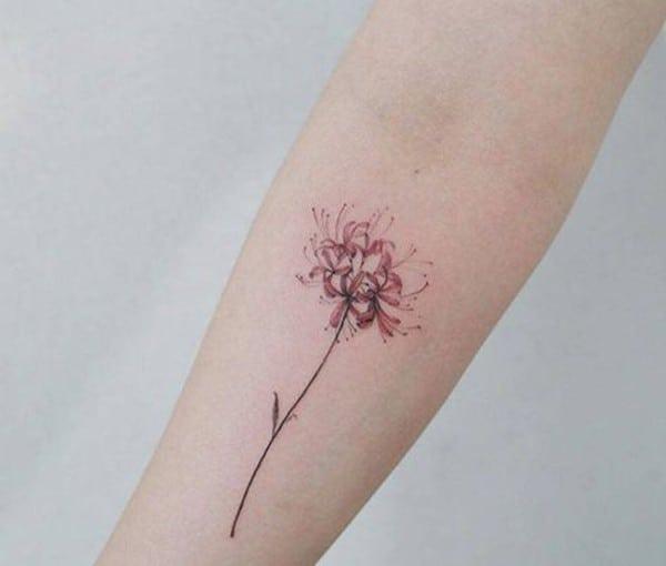 hình xăm hoa bỉ ngạn đỏ
