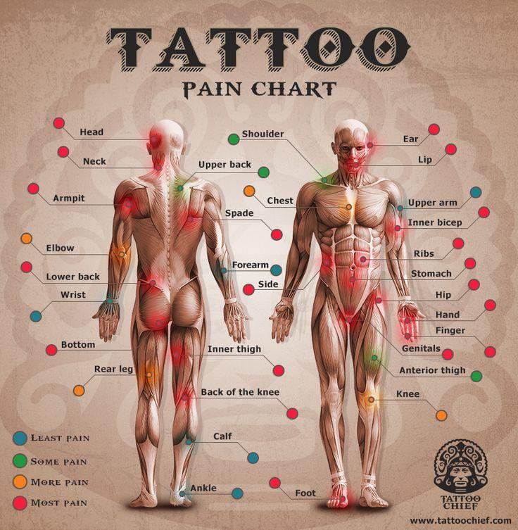bản đồ mức độ đau của các vị trí trên cơ thể