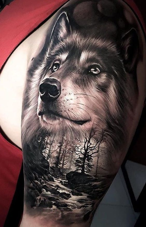 Chó sói xám thể hiện ý nghĩa dũng cảm
