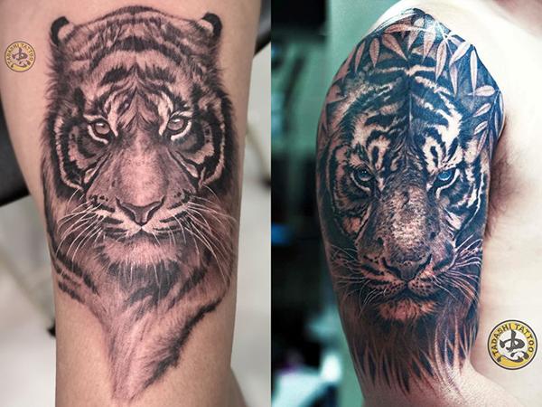 Hổ là vua của muôn loài thú