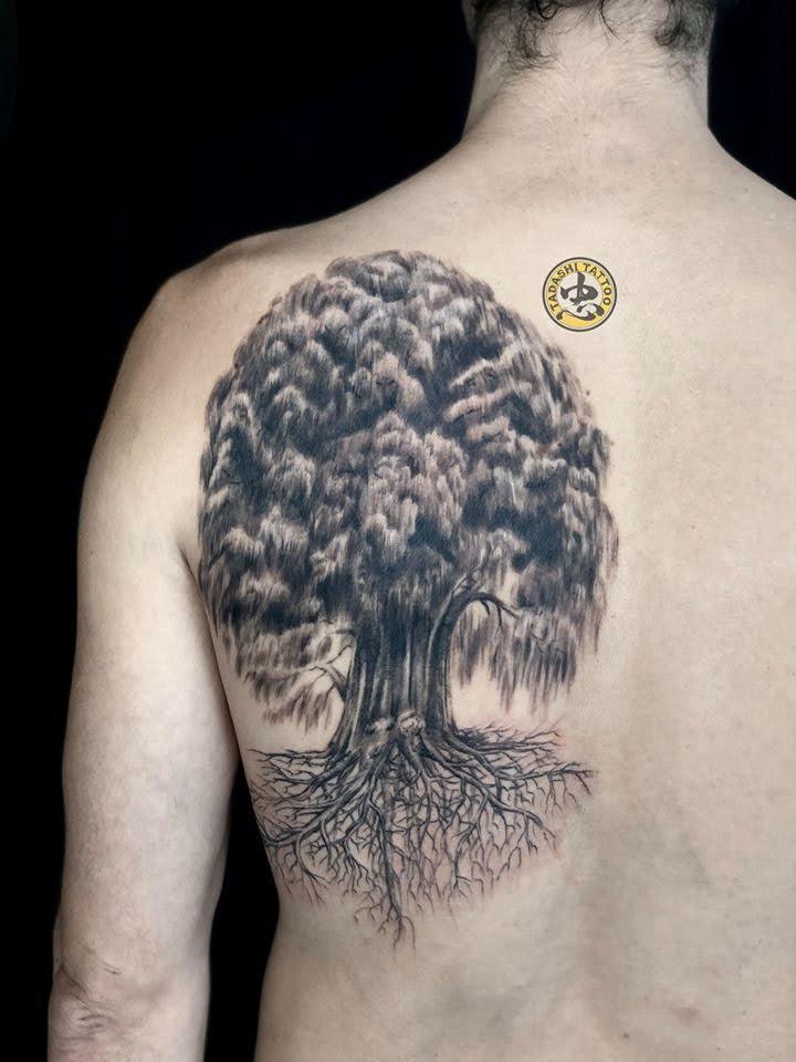hình xăm cây cổ thụ sau lưng