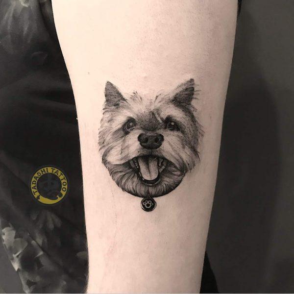 hình xăm con chó ở cánh tay đem lại vận may và tài lộc cho các bạn nam sinh năm 1989