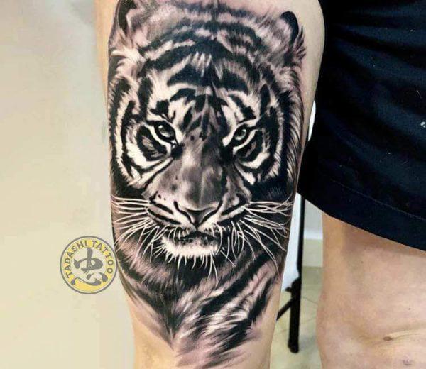 hình xăm con hổ ở bắp đùi đẹp đem lại may mắn cho gia chủ mậu dần