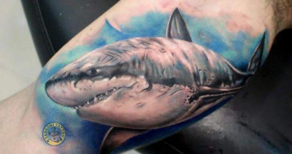 Hình xăm con cá mập với đường nét tinh tế hợp với nam giới sinh năm 1988