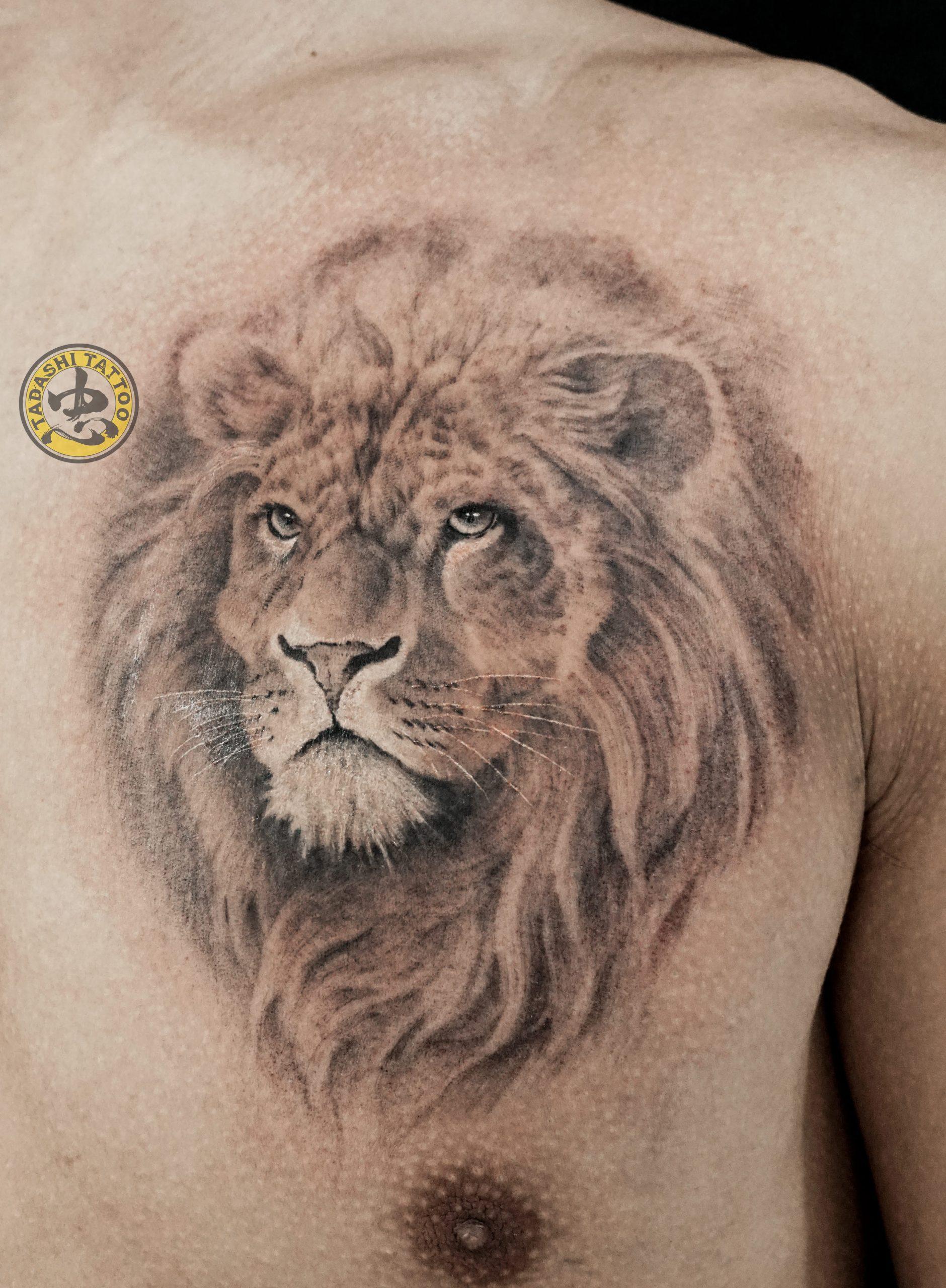Thông tin về hình xăm sư tử